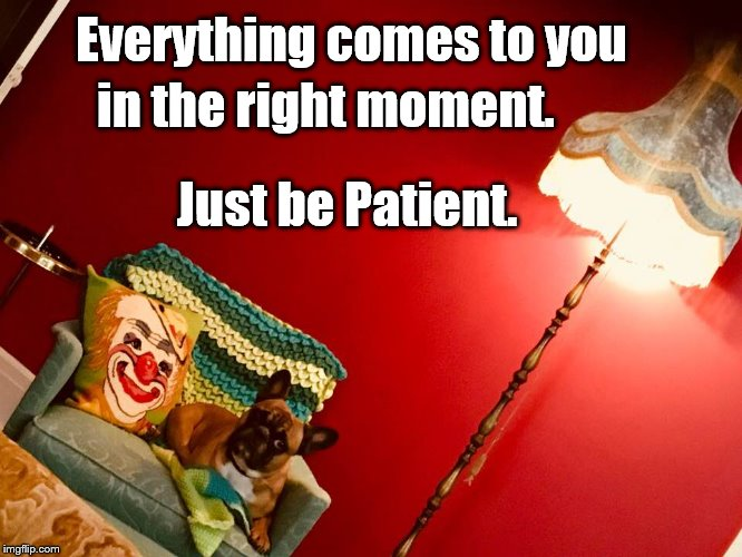 Patience  | Everything comes to you Just be Patient. in the right moment. | image tagged in patience | made w/ Imgflip meme maker