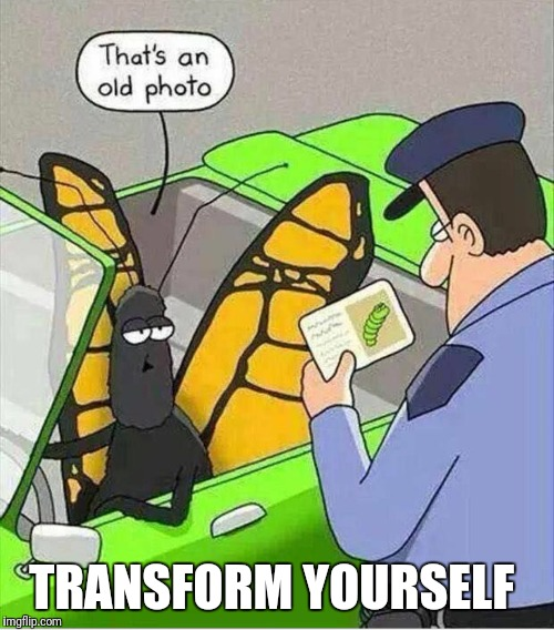 Transformation butterfly  | TRANSFORM YOURSELF | image tagged in transformation,gym,fitness,exercise,motivation,workout | made w/ Imgflip meme maker