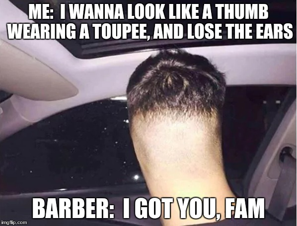 Nailed it! | ME:  I WANNA LOOK LIKE A THUMB WEARING A TOUPEE, AND LOSE THE EARS BARBER:  I GOT YOU, FAM | image tagged in funny,memes,haircut | made w/ Imgflip meme maker