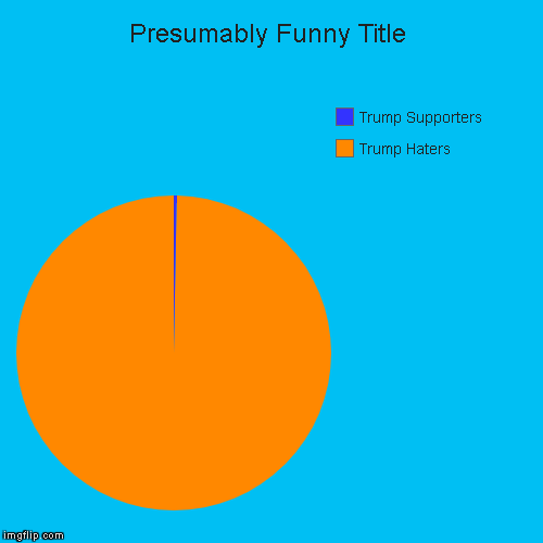 Trump Haters, Trump Supporters | image tagged in funny,pie charts | made w/ Imgflip pie chart maker