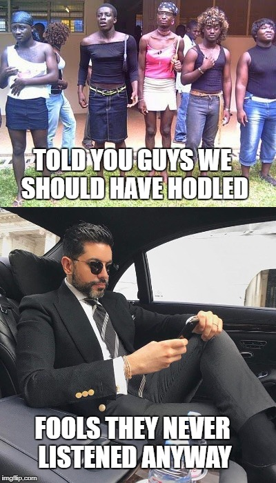 Hodl | TOLD YOU GUYS WE SHOULD HAVE HODLED FOOLS THEY NEVER LISTENED ANYWAY | image tagged in crypto,hodl | made w/ Imgflip meme maker