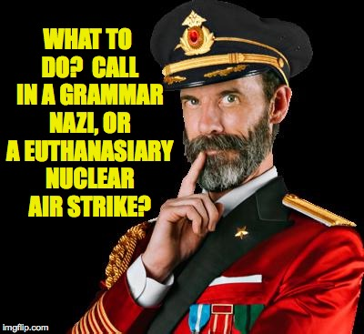 WHAT TO DO?  CALL IN A GRAMMAR NAZI, OR A EUTHANASIARY NUCLEAR AIR STRIKE? | made w/ Imgflip meme maker