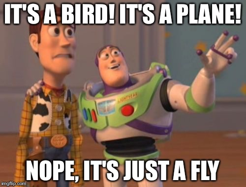 X, X Everywhere Meme | IT'S A BIRD! IT'S A PLANE! NOPE, IT'S JUST A FLY | image tagged in memes,x,x everywhere,x x everywhere | made w/ Imgflip meme maker