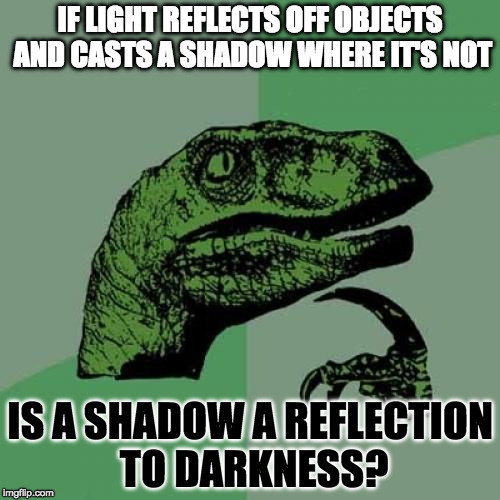 What I Think About The Second Before I Go To Sleep Every Night | IF LIGHT REFLECTS OFF OBJECTS AND CASTS A SHADOW WHERE IT'S NOT IS A SHADOW A REFLECTION TO DARKNESS? | image tagged in memes,philosoraptor,light,darkness,shadow,reflection | made w/ Imgflip meme maker