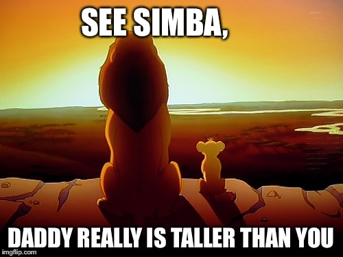 Lion King Meme | SEE SIMBA, DADDY REALLY IS TALLER THAN YOU | image tagged in memes,lion king | made w/ Imgflip meme maker