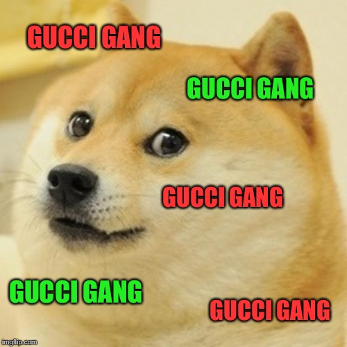 Doge Meme | GUCCI GANG GUCCI GANG GUCCI GANG GUCCI GANG GUCCI GANG | image tagged in memes,doge | made w/ Imgflip meme maker