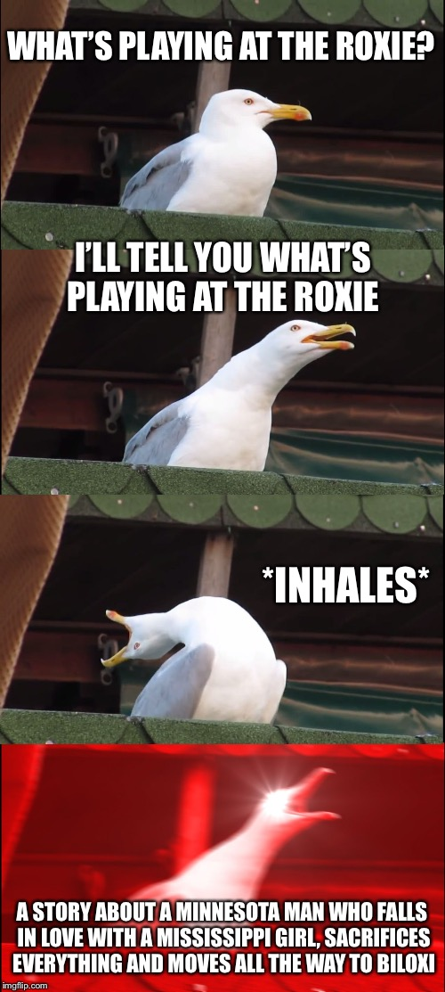 Inhaling Seagull Meme | WHAT'S PLAYING AT THE ROXIE? I'LL TELL YOU WHAT'S PLAYING AT THE ROXIE *INHALES* A STORY ABOUT A MINNESOTA MAN WHO FALLS IN LOVE WITH A MISS | image tagged in inhaling seagull | made w/ Imgflip meme maker