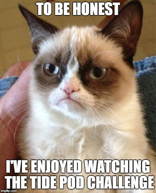 Grumpy Cat Meme | TO BE HONEST I'VE ENJOYED WATCHING THE TIDE POD CHALLENGE | image tagged in memes,grumpy cat | made w/ Imgflip meme maker