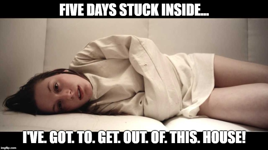 Got to get out of this house! | FIVE DAYS STUCK INSIDE... I'VE. GOT. TO. GET. OUT. OF. THIS. HOUSE! | image tagged in woman in straight jacket,crazy,house,inside,outside | made w/ Imgflip meme maker