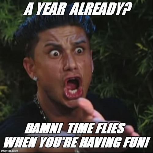 A YEAR  ALREADY? DAMN!  TIME FLIES WHEN YOU'RE HAVING FUN! | made w/ Imgflip meme maker