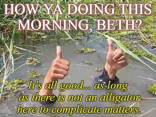 flood no worries | HOW YA DOING THIS MORNING, BETH? It's all good... as long as there is not an alligator here to complicate matters. | image tagged in flood no worries | made w/ Imgflip meme maker