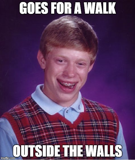Bad Luck Brian Meme | GOES FOR A WALK OUTSIDE THE WALLS | image tagged in memes,bad luck brian | made w/ Imgflip meme maker