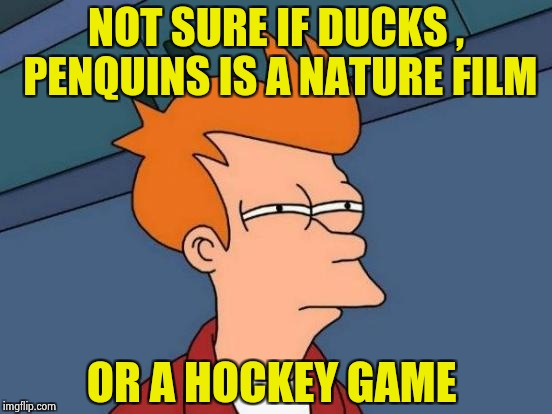 An abbreviated sports report | NOT SURE IF DUCKS , PENQUINS IS A NATURE FILM OR A HOCKEY GAME | image tagged in memes,futurama fry,hockey,birds,quack | made w/ Imgflip meme maker