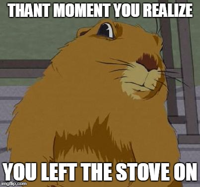 THANT MOMENT YOU REALIZE YOU LEFT THE STOVE ON | image tagged in dramatic gopher | made w/ Imgflip meme maker