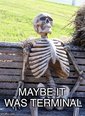 Waiting Skeleton Meme | MAYBE IT WAS TERMINAL | image tagged in memes,waiting skeleton | made w/ Imgflip meme maker