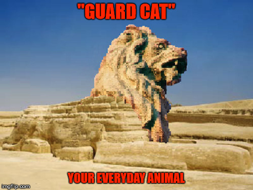 "Guard Cat | ""GUARD CAT"" YOUR EVERYDAY ANIMAL 