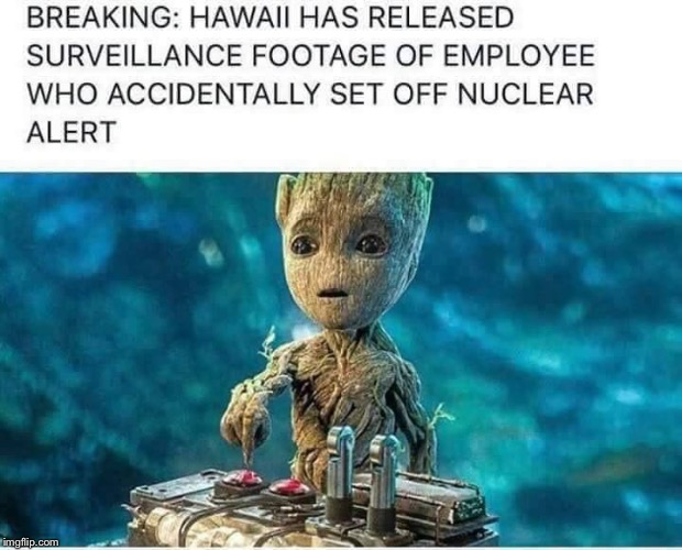 You had ONE JOB, Groot! ONE JOB! | image tagged in you had one job,groot one job,hawaii | made w/ Imgflip meme maker