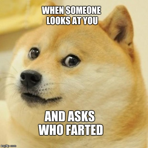 Doge Meme | WHEN SOMEONE LOOKS AT YOU AND ASKS WHO FARTED | image tagged in memes,doge | made w/ Imgflip meme maker