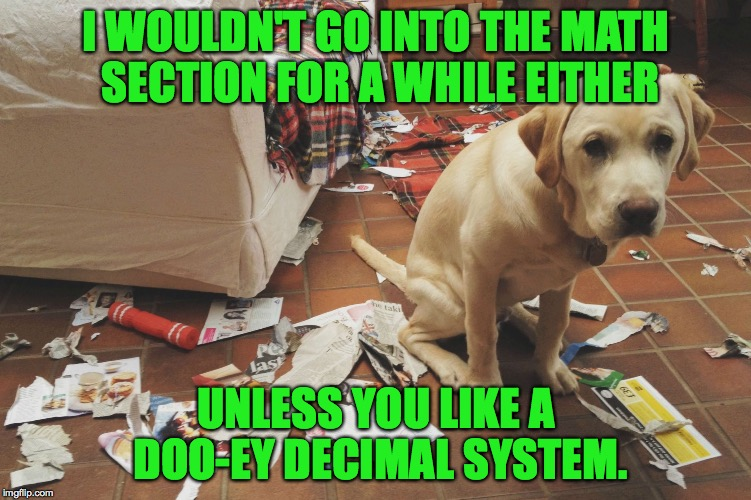 I WOULDN'T GO INTO THE MATH SECTION FOR A WHILE EITHER UNLESS YOU LIKE A DOO-EY DECIMAL SYSTEM. | made w/ Imgflip meme maker