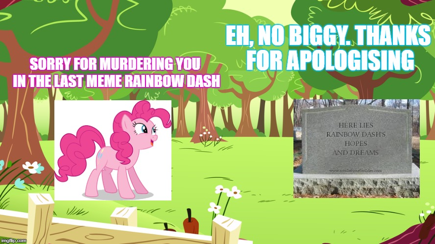 Friendship is magic, or something. | SORRY FOR MURDERING YOU IN THE LAST MEME RAINBOW DASH EH, NO BIGGY. THANKS FOR APOLOGISING | image tagged in mlp pinkie pie rainbow dash | made w/ Imgflip meme maker