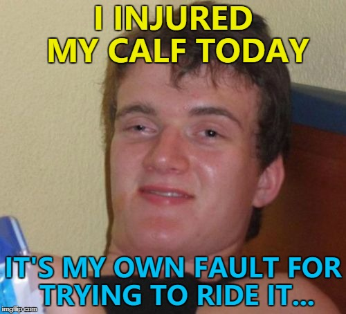 Don't have a cow, man... :) | I INJURED MY CALF TODAY IT'S MY OWN FAULT FOR TRYING TO RIDE IT... | image tagged in memes,10 guy,animals,cows,calf,injury | made w/ Imgflip meme maker
