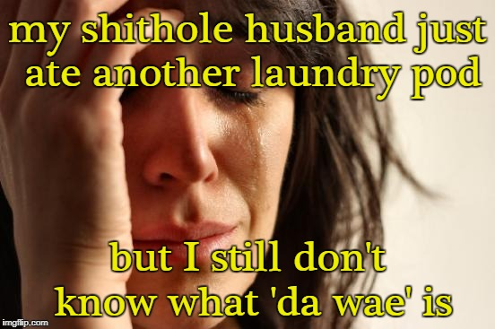 First World Problems Meme | my shithole husband just ate another laundry pod but I still don't know what 'da wae' is | image tagged in memes,first world problems | made w/ Imgflip meme maker