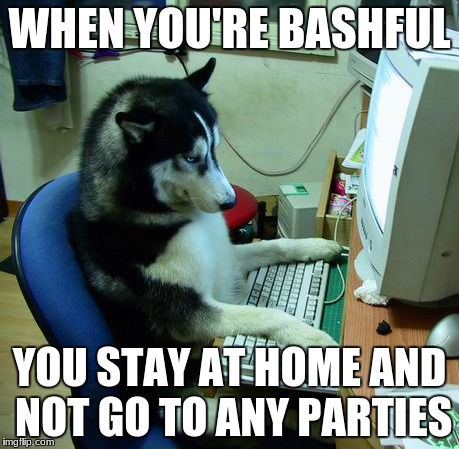I Have No Idea What I Am Doing Meme | WHEN YOU'RE BASHFUL YOU STAY AT HOME AND NOT GO TO ANY PARTIES | image tagged in memes,i have no idea what i am doing | made w/ Imgflip meme maker