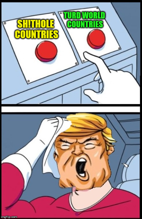 Two Buttons Trump | SH!THOLE COUNTRIES TURD WORLD COUNTRIES | image tagged in two buttons trump,memes,two buttons,donald trump | made w/ Imgflip meme maker