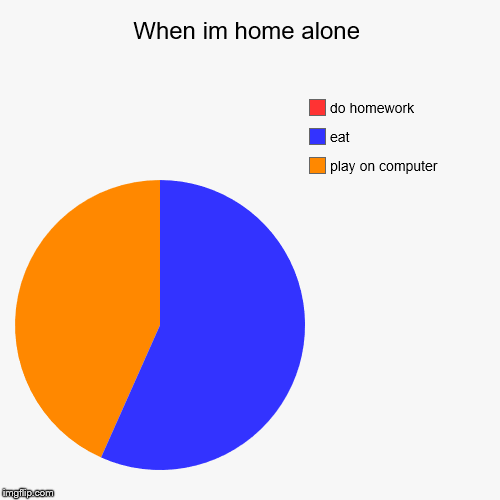 When I'm home alone | When im home alone | play on computer, eat, do homework | image tagged in funny,pie charts | made w/ Imgflip pie chart maker