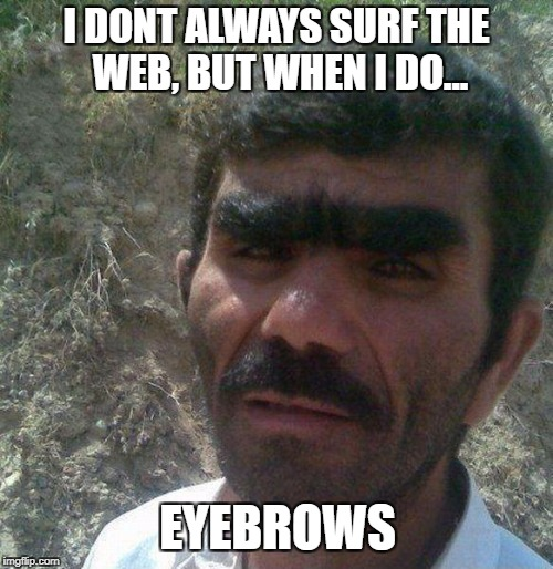 I DONT ALWAYS SURF THE WEB, BUT WHEN I DO... EYEBROWS | image tagged in unibrow | made w/ Imgflip meme maker