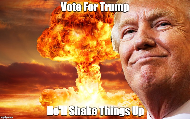 Vote For Trump He'll Shake Things Up | made w/ Imgflip meme maker
