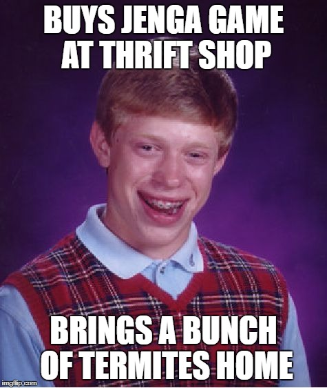 Bad Luck Brian Meme | BUYS JENGA GAME AT THRIFT SHOP BRINGS A BUNCH OF TERMITES HOME | image tagged in memes,bad luck brian | made w/ Imgflip meme maker