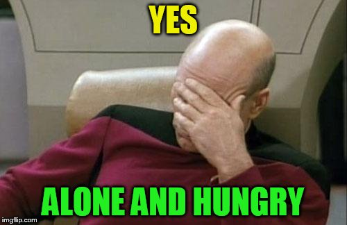 Captain Picard Facepalm Meme | YES ALONE AND HUNGRY | image tagged in memes,captain picard facepalm | made w/ Imgflip meme maker