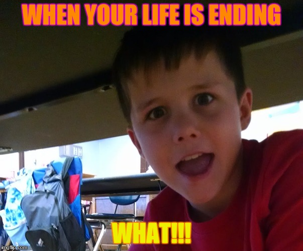 WHEN YOUR LIFE IS ENDING WHAT!!! | image tagged in when your life is ending | made w/ Imgflip meme maker