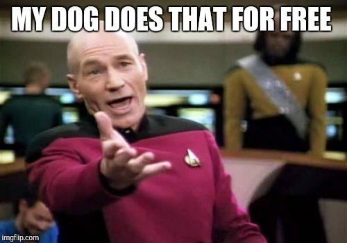 Picard Wtf Meme | MY DOG DOES THAT FOR FREE | image tagged in memes,picard wtf | made w/ Imgflip meme maker