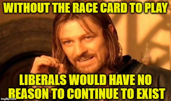 One Does Not Simply Meme | WITHOUT THE RACE CARD TO PLAY LIBERALS WOULD HAVE NO REASON TO CONTINUE TO EXIST | image tagged in memes,one does not simply | made w/ Imgflip meme maker