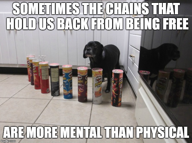 Dumb Dog | SOMETIMES THE CHAINS THAT HOLD US BACK FROM BEING FREE ARE MORE MENTAL THAN PHYSICAL | image tagged in inspirational,dog,dumb | made w/ Imgflip meme maker