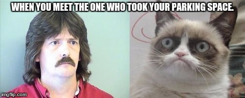 Grumpy Cats Father | WHEN YOU MEET THE ONE WHO TOOK YOUR PARKING SPACE. | image tagged in memes,grumpy cats father,grumpy cat | made w/ Imgflip meme maker