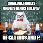 SOMEONE FINALLY UNDERSTANDS THE LAW OF CAT IONS AND F! | made w/ Imgflip meme maker