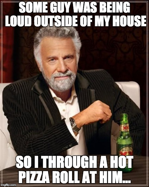 The Most Interesting Man In The World Meme | SOME GUY WAS BEING LOUD OUTSIDE OF MY HOUSE SO I THROUGH A HOT PIZZA ROLL AT HIM... | image tagged in memes,the most interesting man in the world | made w/ Imgflip meme maker