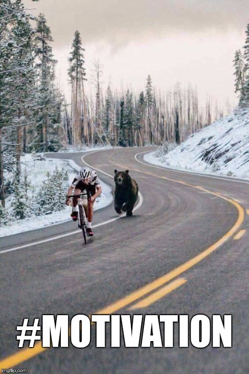 #MOTIVATION | image tagged in bear chasing cyclist | made w/ Imgflip meme maker