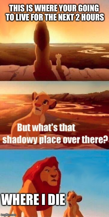 Simba Shadowy Place Meme | THIS IS WHERE YOUR GOING TO LIVE FOR THE NEXT 2 HOURS WHERE I DIE | image tagged in memes,simba shadowy place | made w/ Imgflip meme maker