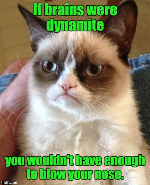Grumpy Cat Meme | If brains were dynamite you wouldn't have enough to blow your nose. | image tagged in memes,grumpy cat | made w/ Imgflip meme maker