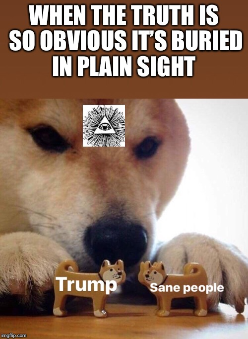 WHEN THE TRUTH IS SO OBVIOUS IT'S BURIED IN PLAIN SIGHT | image tagged in memes,funny memes,trump,illuminati,dog,truth | made w/ Imgflip meme maker