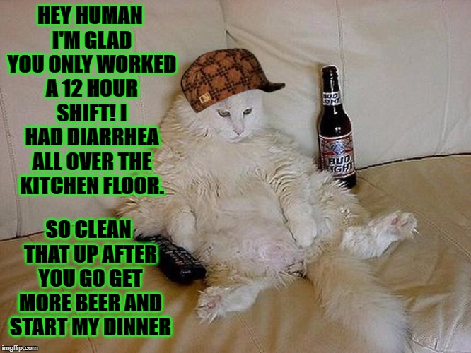 HEY HUMAN I'M GLAD YOU ONLY WORKED A 12 HOUR SHIFT! I HAD DIARRHEA ALL OVER THE KITCHEN FLOOR. SO CLEAN THAT UP AFTER YOU GO GET MORE BEER A | image tagged in fat drunk  lazy,scumbag | made w/ Imgflip meme maker