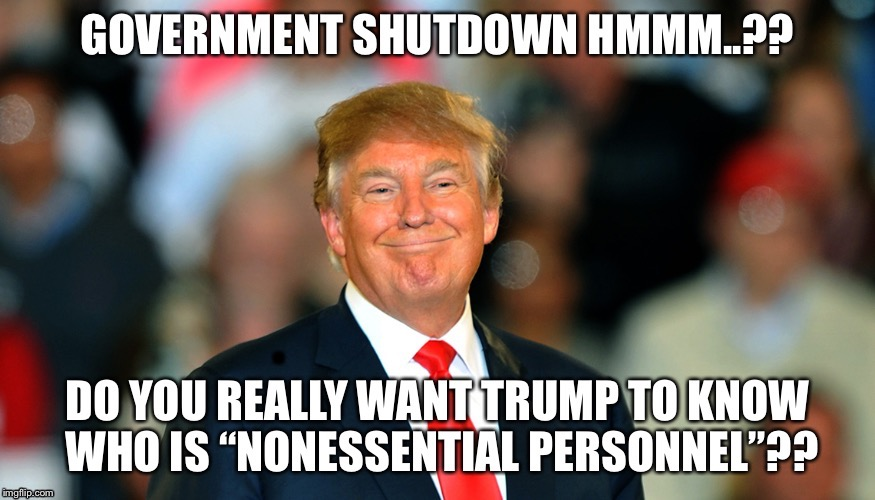 . | image tagged in government shutdown | made w/ Imgflip meme maker