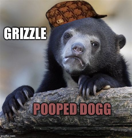 Confession Brizzle | GRIZZLE POOPED DOGG | image tagged in memes,confession bear,scumbag | made w/ Imgflip meme maker