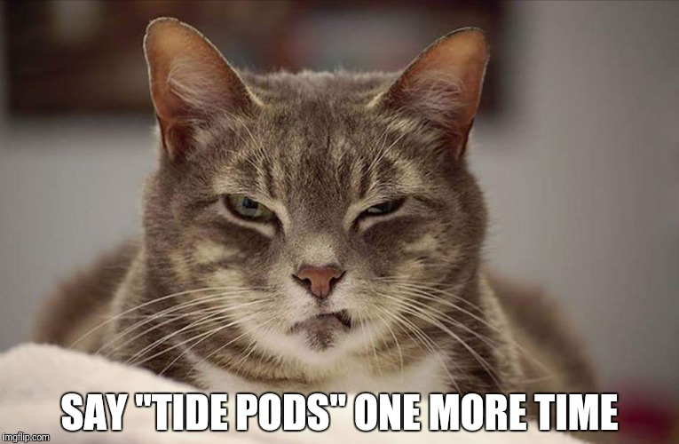 "SAY ""TIDE PODS"" ONE MORE TIME 