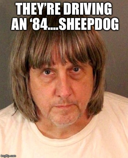 THEY'RE DRIVING AN '84....SHEEPDOG | image tagged in dumb and dumber | made w/ Imgflip meme maker