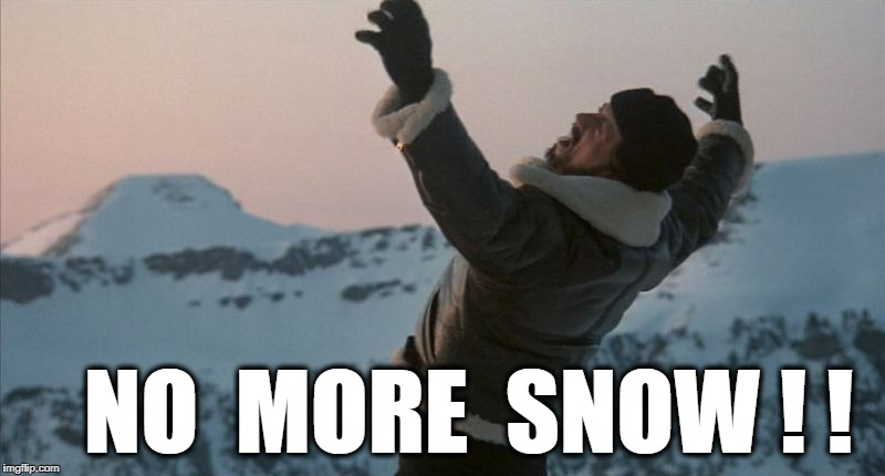 NO  MORE  SNOW ! ! | image tagged in snow day | made w/ Imgflip meme maker